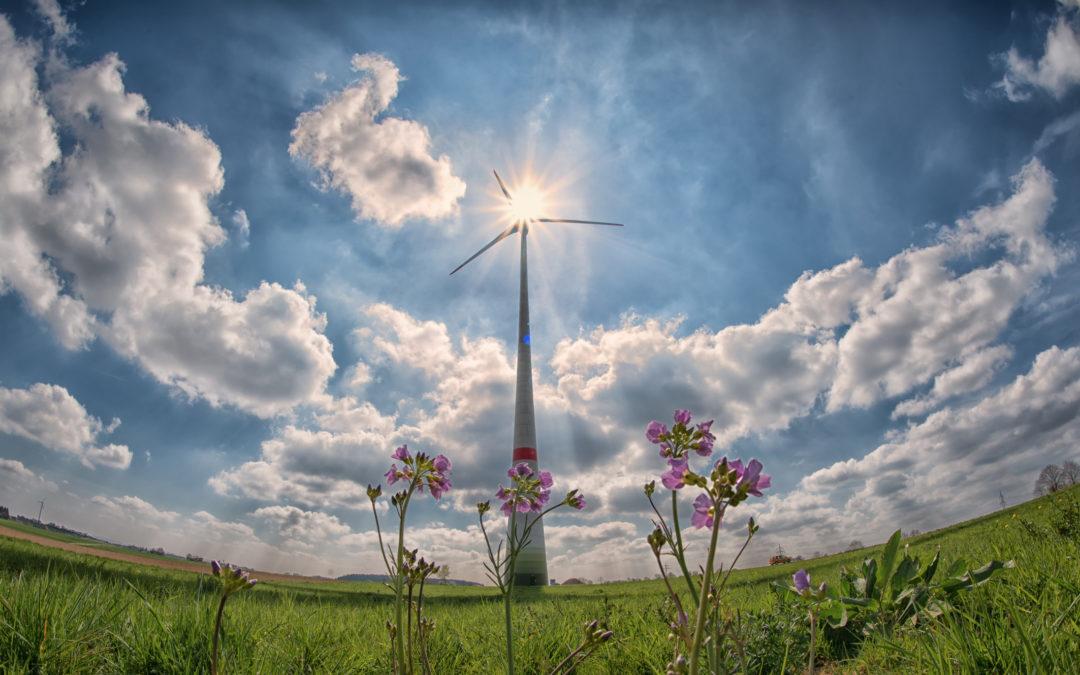 El ilusionante futuro de las renovables